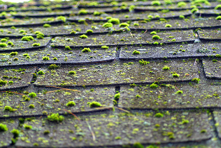 We Offer Roof Our Cleaning Services Throughout Cheshire. Thereu0027s No Job Too  Big Or Too Small! When You Book Tom U0027nu0027 Team To Clean Your Roof We Will  Bring ...